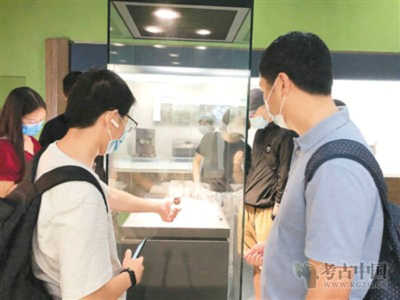 湖北博物馆、图书馆、文化馆正式开馆:又闻荆风楚韵书卷香