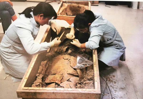 河南荥阳汪沟遗址发现目前中国最早丝绸