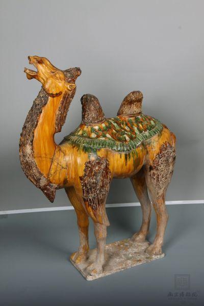 唐代 ·  三彩骆驼(南京博物院)