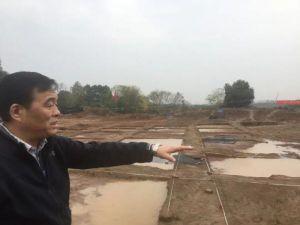 湖北:黄陂新发现32座新石器时代墓葬