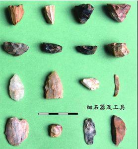山东宁阳发现细石器遗存