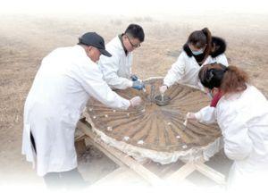 李存信:从田野考古到实验室考古
