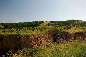 旧石器时代 · 大窑旧石器制作场