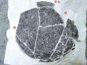 """四川:广汉联合遗址考古成果发布——3200年前古蜀人就刻出了""""龙凤呈祥"""""""