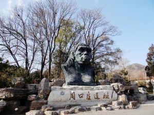 旧石器时代 · 北京人