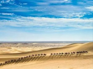 王巍:汉代以前的丝绸之路——考古所见欧亚大陆早期文化交流