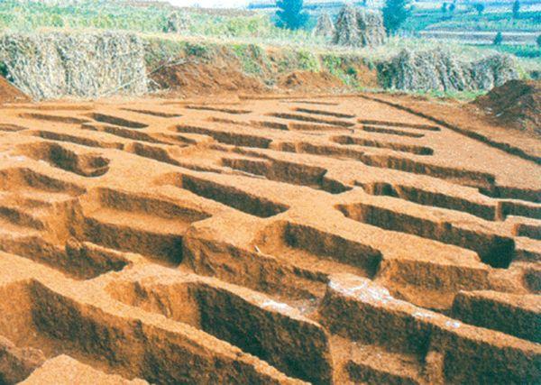 铁器时代 · 贵州西部汉墓