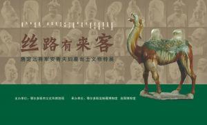 丝路有来客——唐定远将军安菩夫妇墓出土文物特展(鄂尔多斯青铜器博物馆
