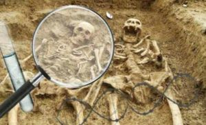 猩红的忧郁 :古人贫血与人类骨骼考古