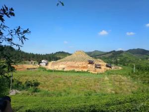 程亦胜:安吉龙山107号越国大墓发现的故事