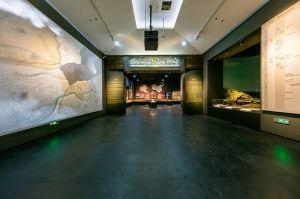 河南博物院全面开放