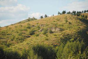 新石器时代 · 富河沟门遗址