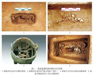 刘一婷 雷兴山 :商系墓葬用牲初探