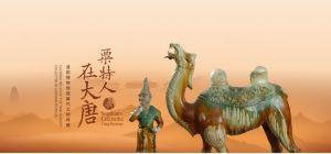粟特人在大唐 ——洛阳博物馆藏唐代文物特展(长沙博物馆)