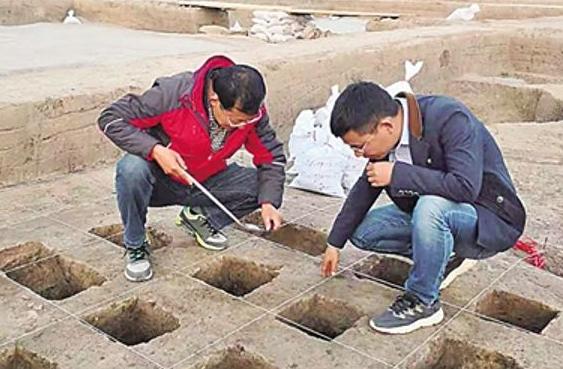 """河南淮阳""""时庄遗址""""疑现四千年前粮仓"""
