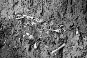 山西:高平市发现疑似长平之战尸骨坑